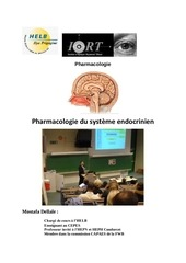le systeme endocrine