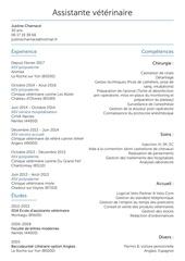 Fichier PDF cv justine 2017