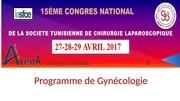Fichier PDF programme 15 e cogres stcl gyneco