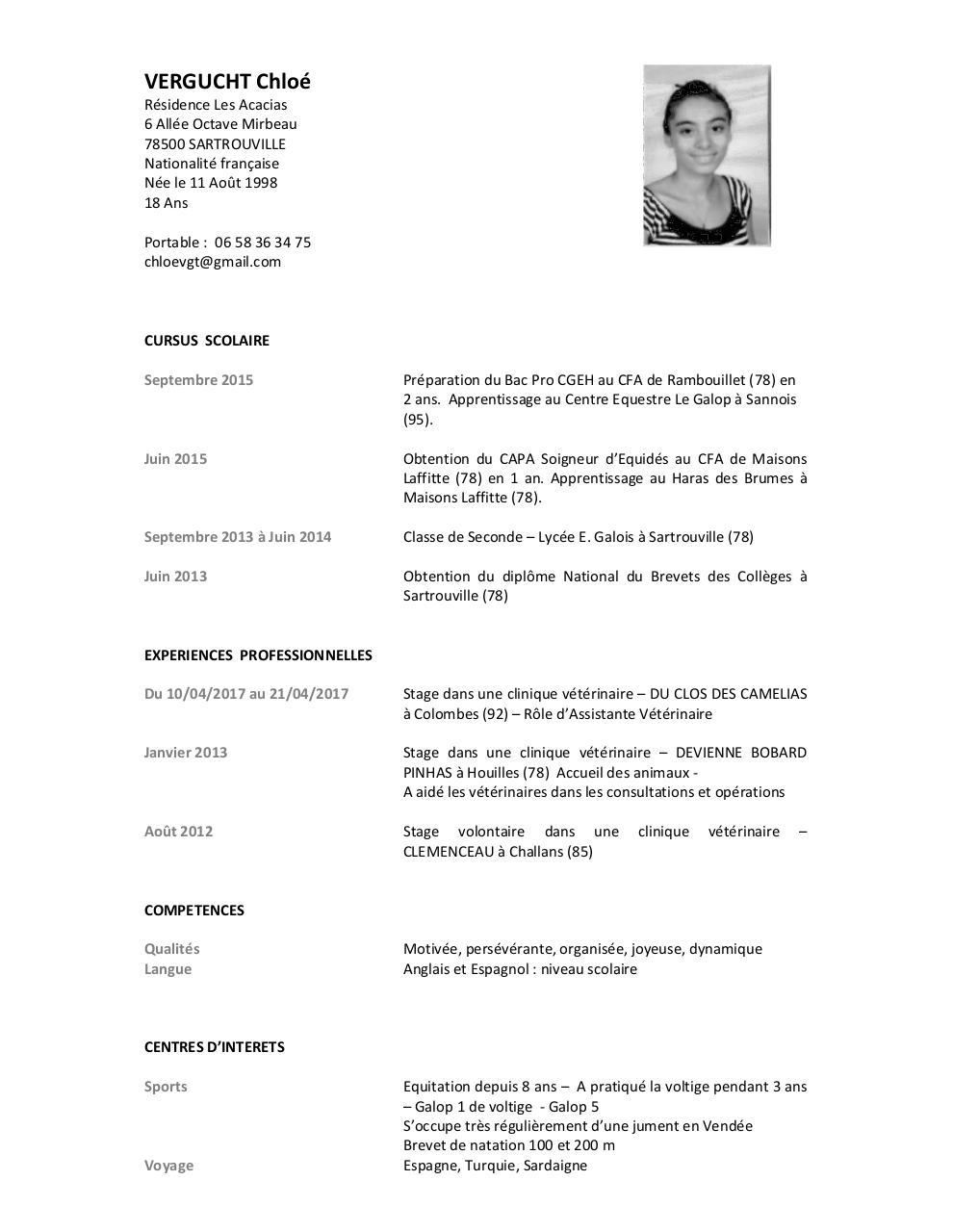 cv chloe docx par cdautry - cv chloe pdf