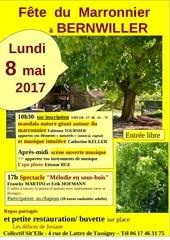 Fichier PDF fete du marronnier3