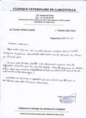 Fichier PDF lettre de recommandation