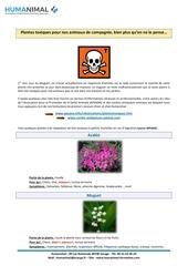 Fichier PDF plantes toxiques
