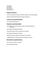 cv anais pdf