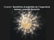 Fichier PDF cours complet symetries et polarites