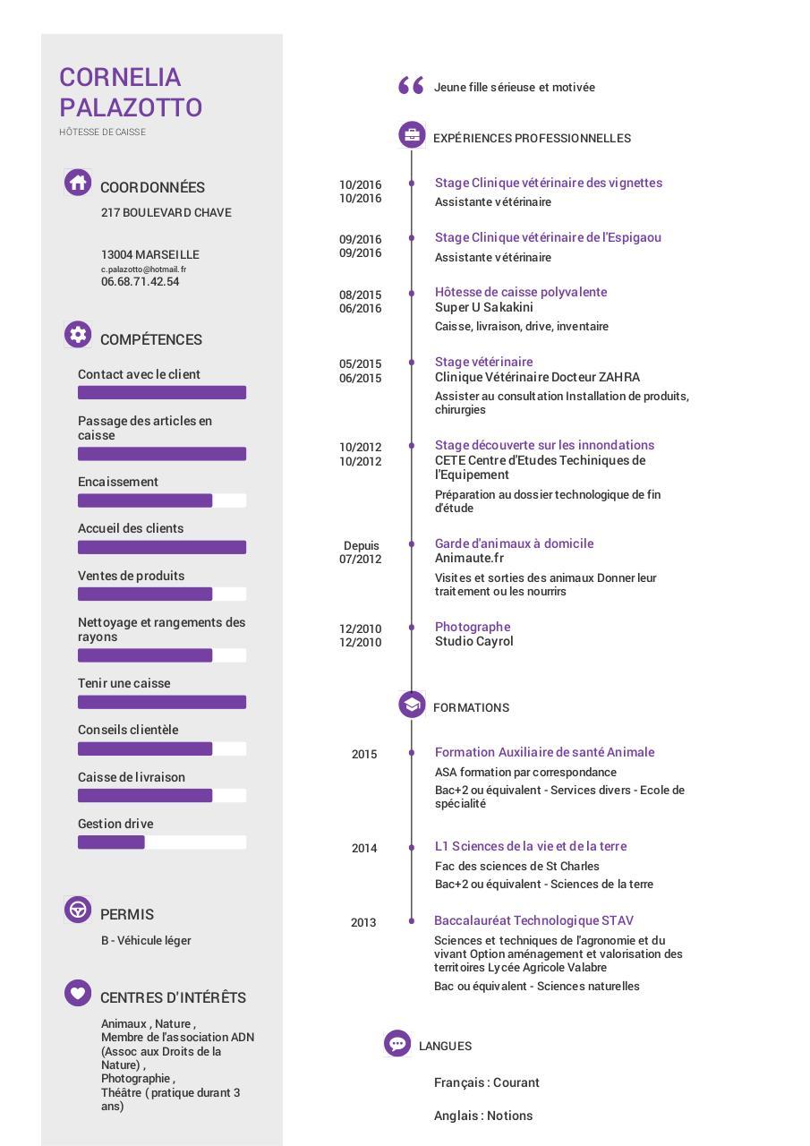 impression cv - cv hotesse permis b pdf