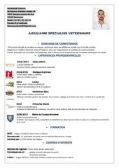 Fichier PDF cv pdf