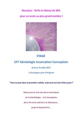 stage eft module de base 2j