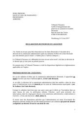 Fichier PDF modele pourvoi vdef