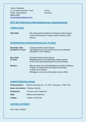 Fichier PDF cv talaktrane yacine