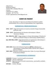 Fichier PDF cv robert