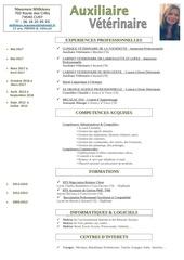 cv asv pdf