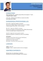 Fichier PDF cv yoann basquin 1
