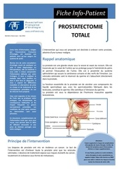 prostatectomie totale 1