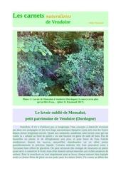 lavoir monsalut vendoire carnets nat d raymond 2017