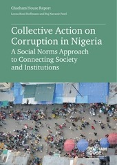 2017 05 17 corruption nigeria hoffmann patel