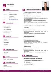 curriculum vitae penot tess auxiliaire veterinaire 2