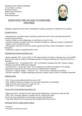Fichier PDF cv 1 1