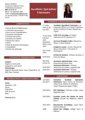 Fichier PDF cv asv