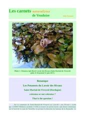 lavoir potamots st martial viveyrol carnets nat d raymond