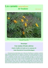 inula salicina st martial de viveyrol carnets d raymond 2017