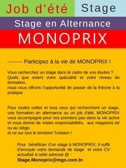 Fichier PDF stages ete monoprix 1