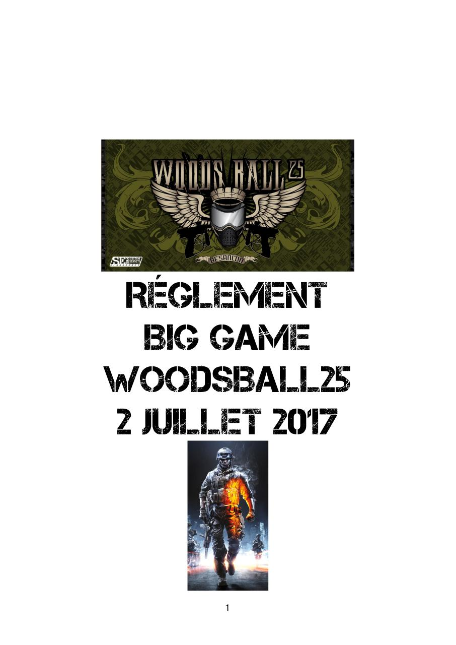 Aperçu du fichier PDF reglement-big-game.pdf