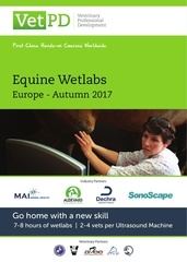 2017 autumn course brochure europe printable