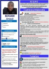 cv arnaud kouam 280189
