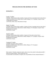 Fichier PDF programme de pre saison 2016