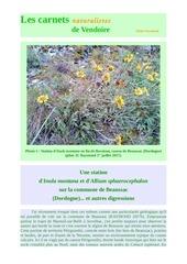 inula montana causse beaussac carnets nat d raymond 2017