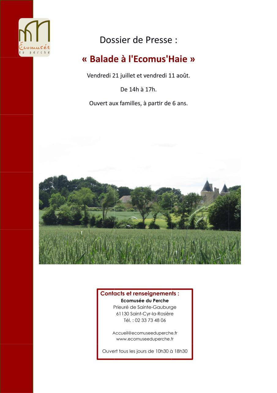 recherche pdf  bts gpn rapport de stage