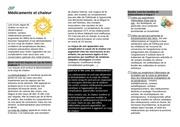 Fichier PDF fiche patients medicaments et chaleur