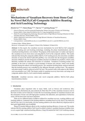 Fichier PDF baco3cao and acid leaching technology