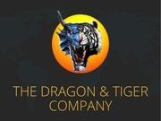 the dragon tiger company presentation fr