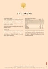 the jaguar 3 5 fr web