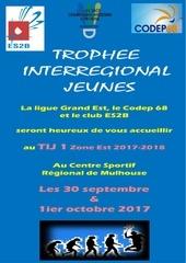 plaquette tij 1 mulhouse 2017 2018