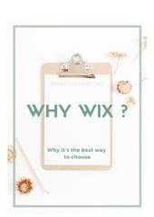 pourquoi choisir une prestation wix