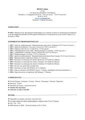 Fichier PDF cv compagnons menuisier