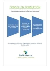 Fichier PDF plaquette sogfs france