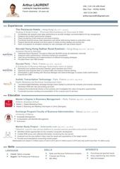 Fichier PDF cv arthur laurent 2017