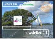 akwapulsion newsletter 1 compressed