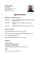 Fichier PDF cv lspd