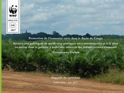 raport synthese green economy 2015 2017 wwf gabon