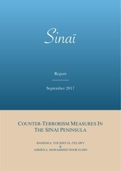 ct measures in the sinai