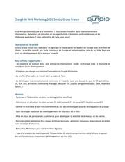 offre sundio charge de web marketing france