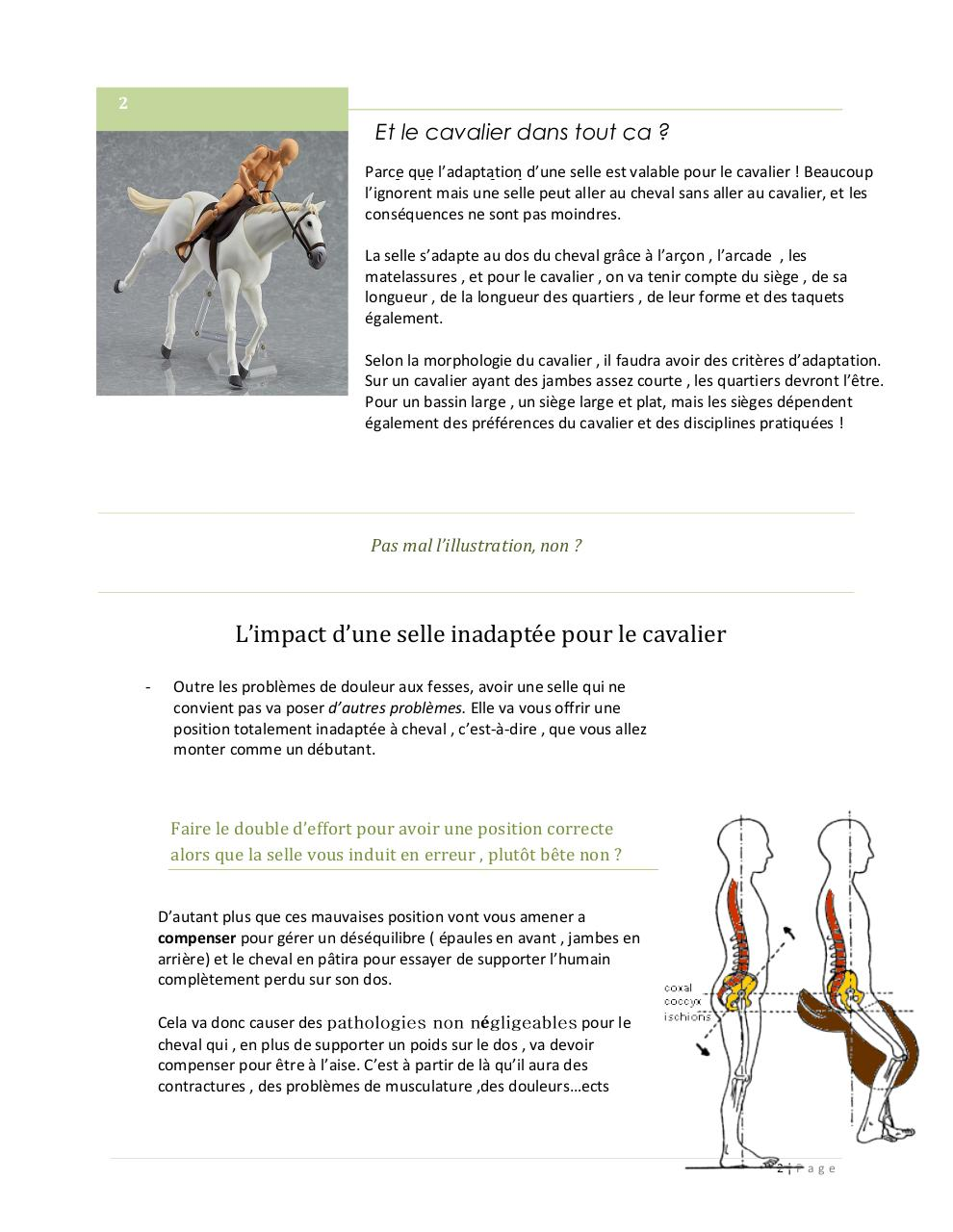 Saddle fitting article.pdf - page 2/4