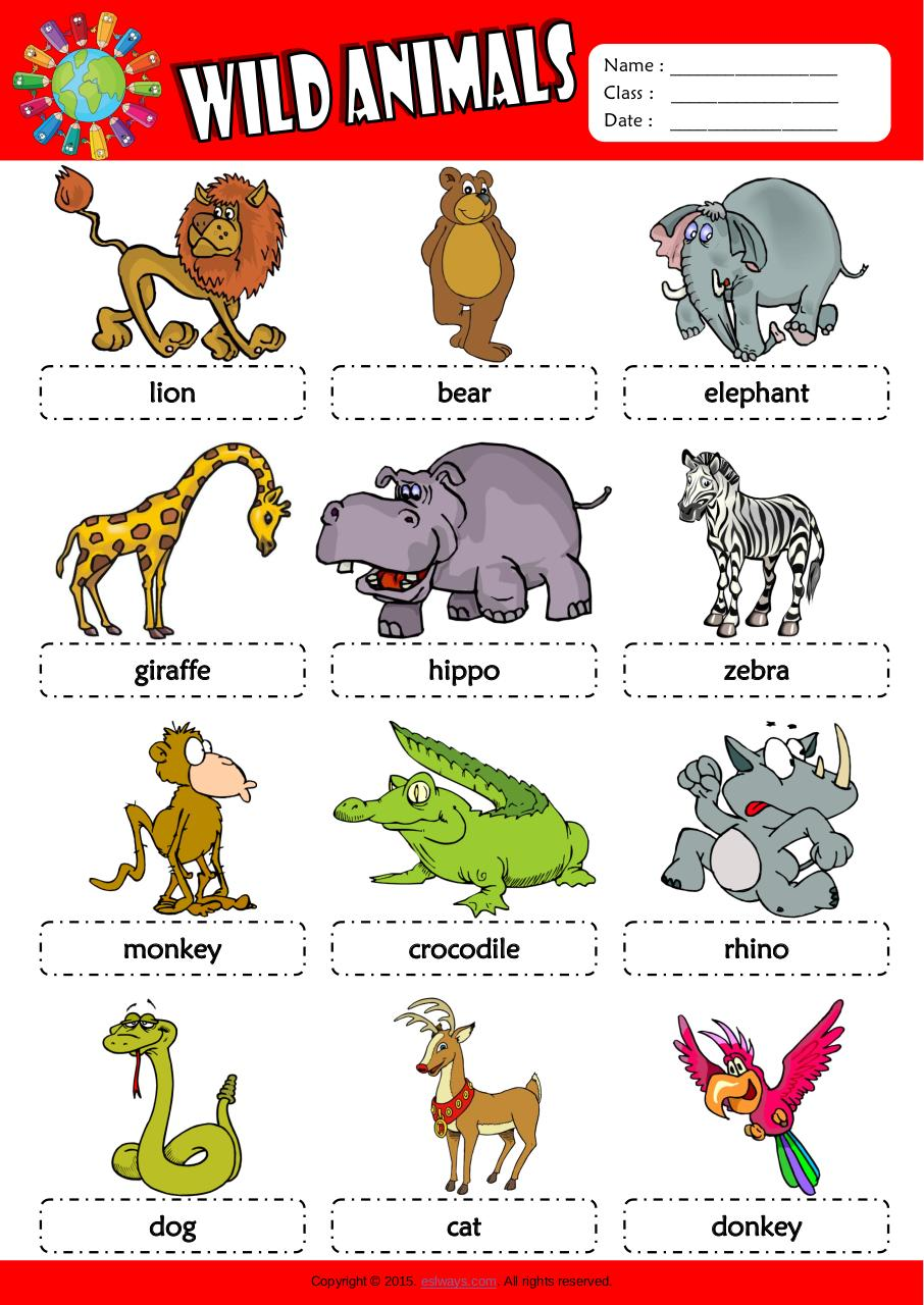 descriptive paragraph about a animal Writing a descriptive paragraph it is the function of descriptive essay to provide detailed descriptions and observations of the subject matter that are being considered.