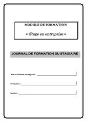journal de formation ad1 ad2 ce1 ce2 tsci1 tsci2 stage1