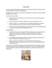 Fichier PDF l eau au citron